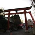 写真: 穴守稲荷神社