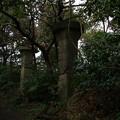 砲台山のコンクリート柱