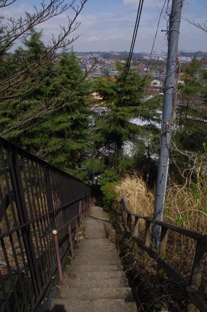 Photos: 鷹取山