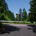 写真: 奈良尾峠(標高1125m)
