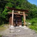 写真: 猿田彦神社
