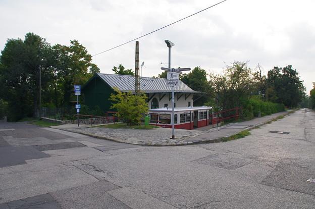 セーチェニ山駅の登山電車