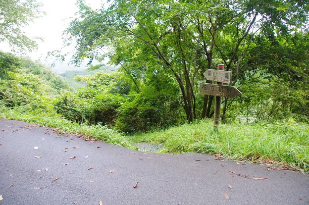 花立松ノ峠から黒山三滝へ