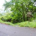 Photos: 花立松ノ峠から黒山三滝へ