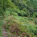 写真: 花立松ノ峠から黒山三滝へ