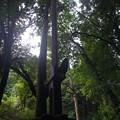 写真: 黒山三滝の剣