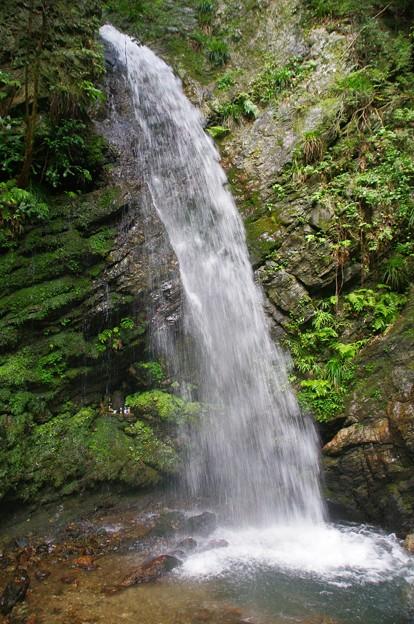 黒山三滝の男滝