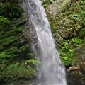写真: 黒山三滝の男滝