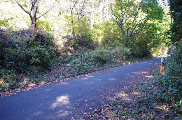 登山道と林道