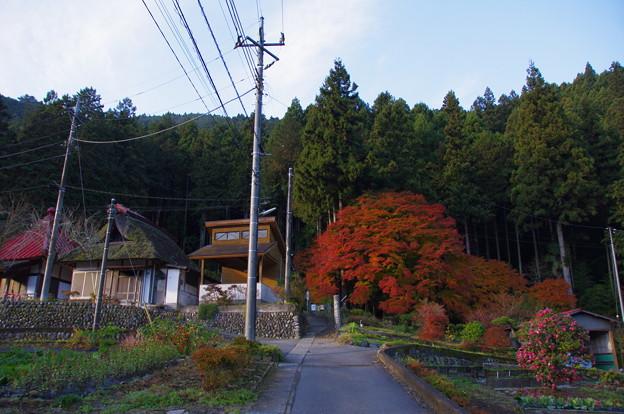 大塚山登山口