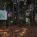 Photos: 大塚山頂上(標高920.2m)