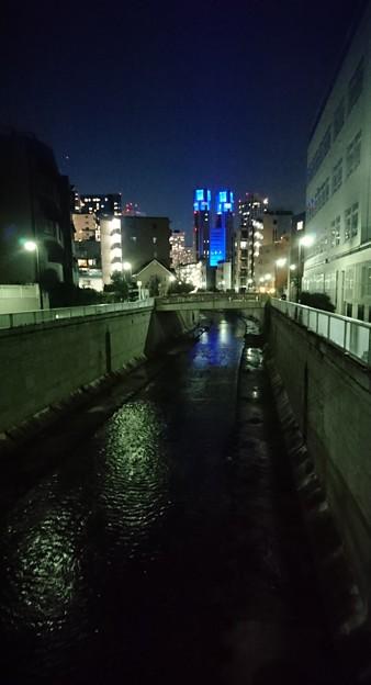 Photos: 夜の神田川と都庁