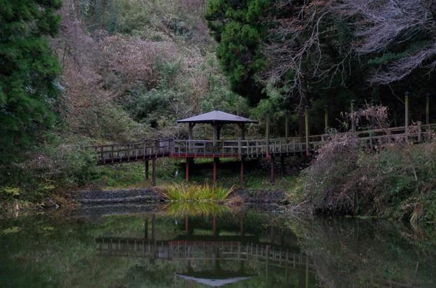 笠森観音の弁天池