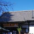 Photos: 新井薬師