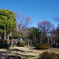 Photos: 明治寺の百観音様