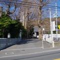 Photos: 玉蔵院