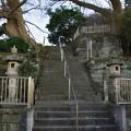 Photos: 六代御前のお墓