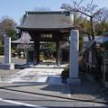 Photos: 禅林寺
