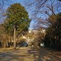 Photos: 世界無名戦士之墓