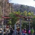 Photos: 梅園神社