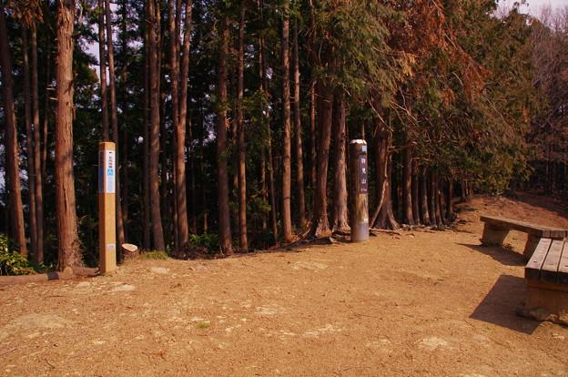 Photos: 物見山頂上(標高375m)