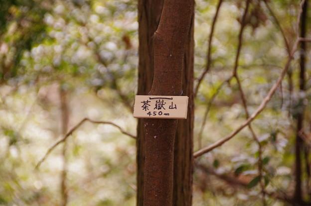 茶嶽山(標高450m)