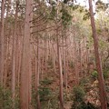 Photos: 越上山