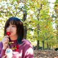Photos: 秋並木