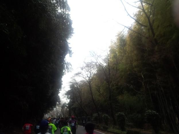 DCF00004 岩国錦帯橋マラソン