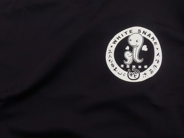 _180309 005 錦帯橋マラソンTシャツ