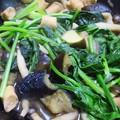 Photos: _180508 001 ナスとほうれんそうの味噌炒め