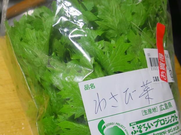 _180620 452 「わさび菜」という野菜