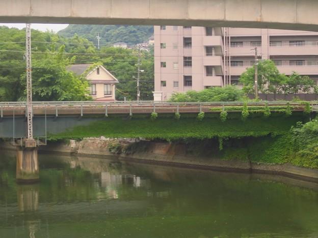 _180625 353 常盤橋 ツタが侵食中