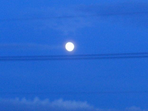 Photos: 日暮の月