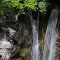 写真: 可愛い滝