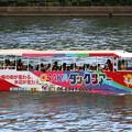 写真: 水陸兼用バス