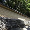 Photos: 長~い塀