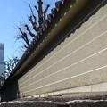 Photos: アベノハルカスと塀