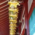 Photos: 亀井堂の灯篭