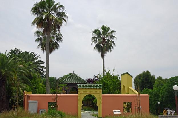 モロッコ庭園