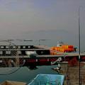 Photos: 早朝の釣り堀