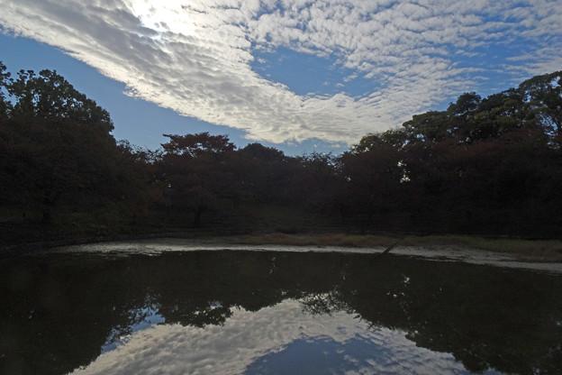 Photos: 秋雲