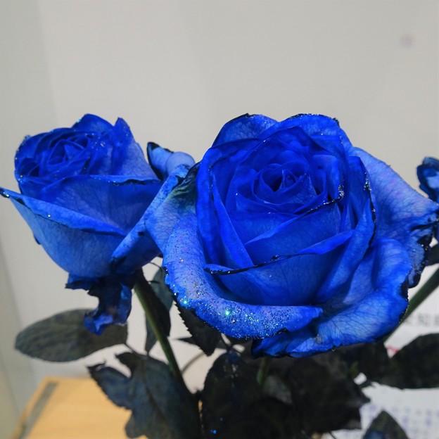 薔薇 ロイヤルブルーラメ