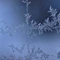 Photos: 窓の霜2