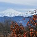 Photos: 残り柿と鳥海山