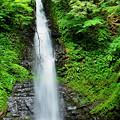 天正の滝~縮小サイズ