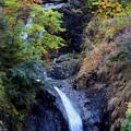 Photos: 少し紅葉滝