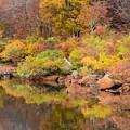 Photos: 水辺の紅葉