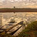 写真: 渡良瀬の朝