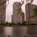 Photos: 中之島公園から